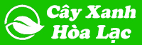 Cây Xanh Hòa Lạc
